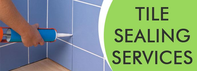 Tile Sealing Services Busby