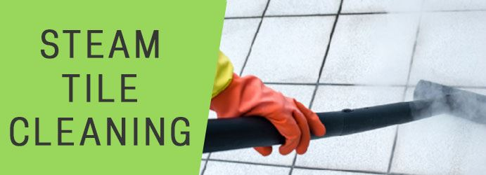 Grout & Tile Cleaning Currambine