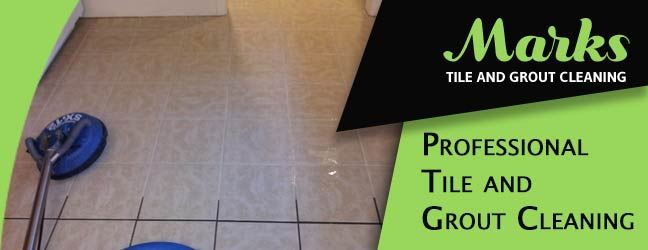 Professional Tile and Grout Cleaning Dynnyrne