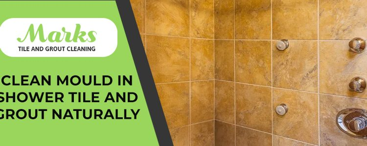 Tile and Grout Naturally Service