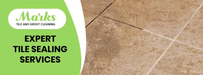 Tile Sealing Service