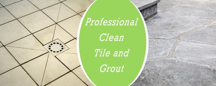 Professionals Clean Tile and Grout